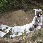 Die Anordnung der Pflanzen wird getestet. Genügend Platz wird miteingeplant, damit sich die Planzen ausbreiten können.