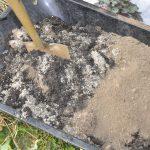 Wir mischen die gesiebte Erde mit einem Drittel Sand und einem Drittel Kompost.
