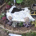 Das Vlies wird in die Grube gelegt und mit etwas Kompost aufgefüllt.