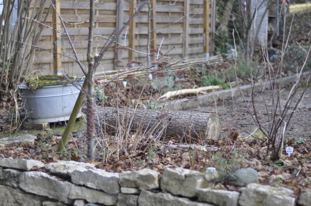 Bei uns dürfen Holzstücke überall im Garten liegen. Sie geben zum Glück keine Arbeit :-)