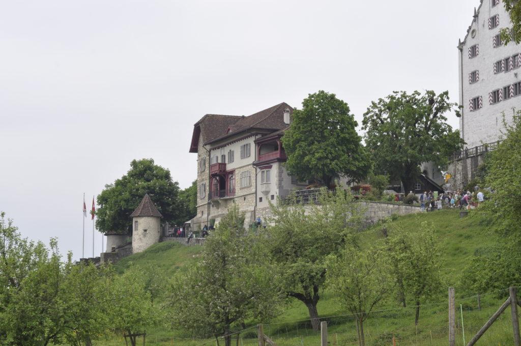 Setzlingsmarkt Schloss Wildegg 278