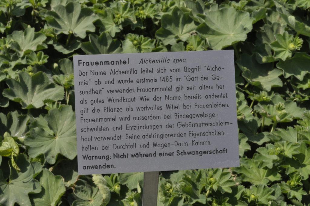 Setzlingsmarkt Schloss Wildegg 301