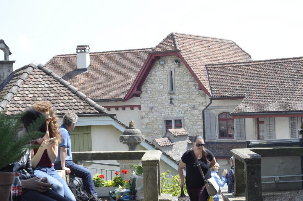 Setzlingsmarkt Schloss Wildegg 279