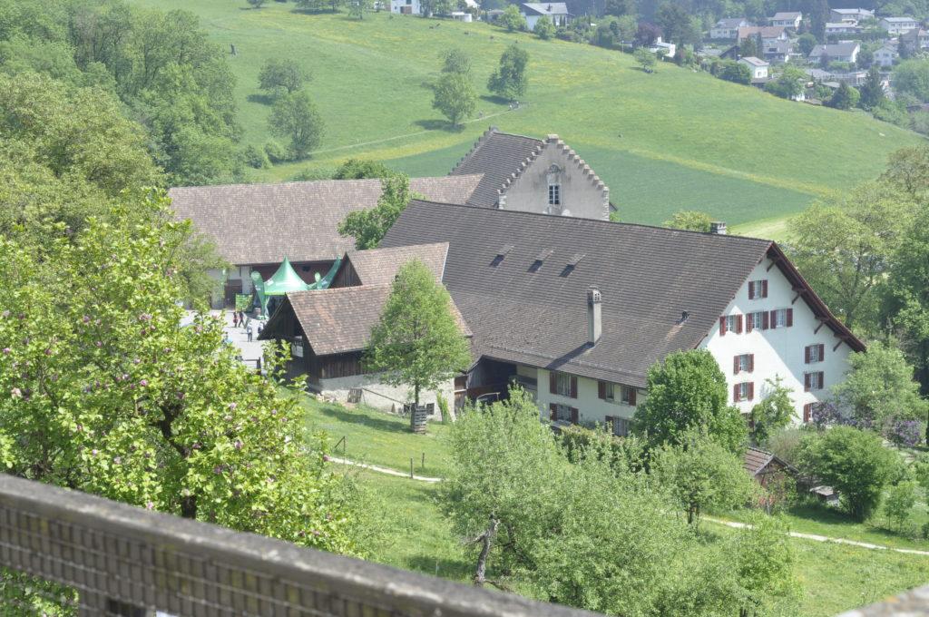 Setzlingsmarkt Schloss Wildegg 281