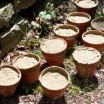 Wildbienenhaus gemeinsam bauen 11