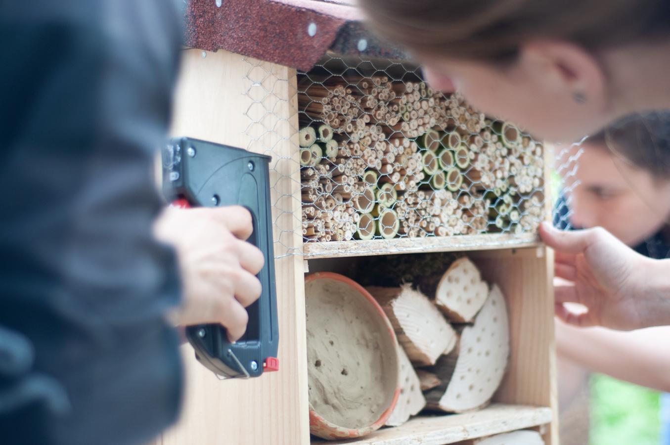 Wildbienenhaus gemeinsam bauen 55