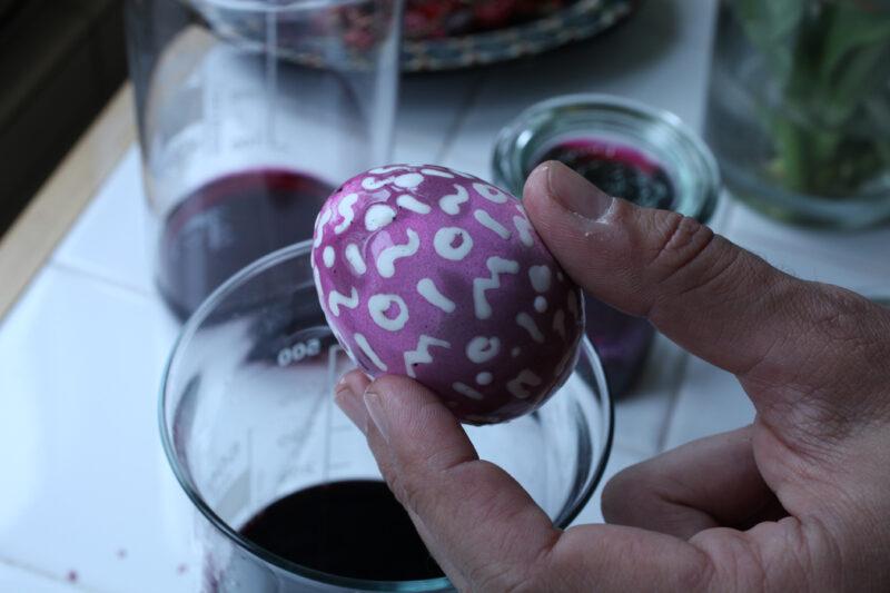 In Cochenillesud gefärbtes Ei (15 Minuten).